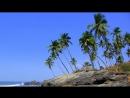 Анджуна пляж Гоа, Индия (Anjuna beach Goa, India)