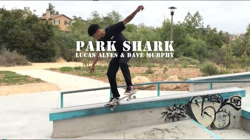 LOWCARD Park Sharks