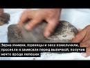 В Иордании найдены остатки самого древнего в мире хлеба