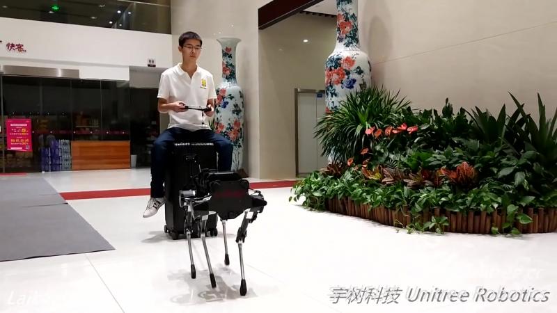 Китайский клон робота из Boston Dynamics.