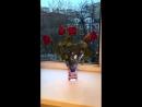 Одегова хвастается новым весенним букетом от своего близкого человека
