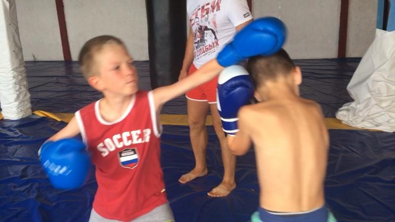 Бобринев-Мотков бокс