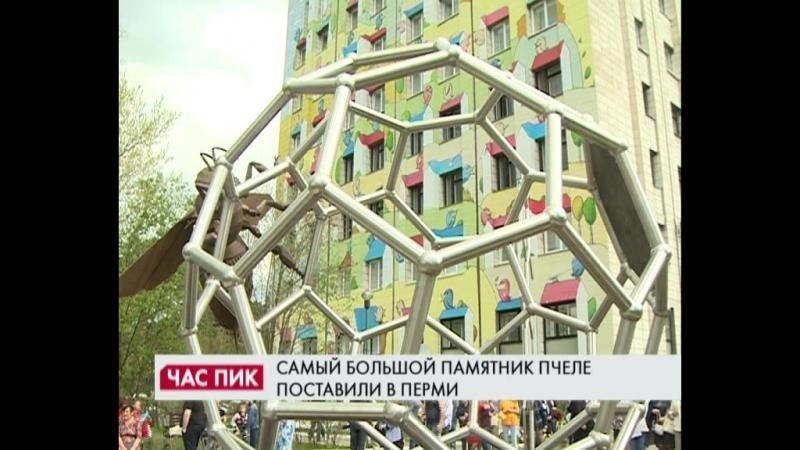 Час Пик Открытие Монумента Пчеле в Перми