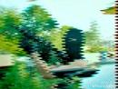 XiaoYing_Video_1533847262459.mp4