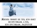 Doc113464782_471360035.mp4