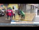 Пермские автобусы и парковки проверили на доступность для инвалидов