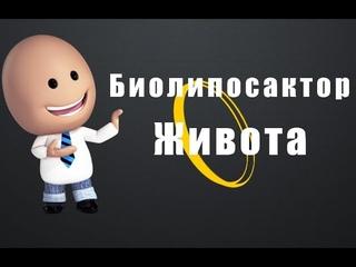 Биолипосактор Живота. Биолипосактор живота инструкция по применению.