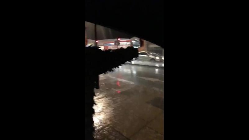 Камила под дождём