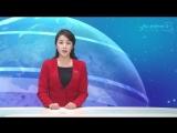 《자유한국당》의 히스테리적인 발작증 –남조선의 민중당이 규탄-
