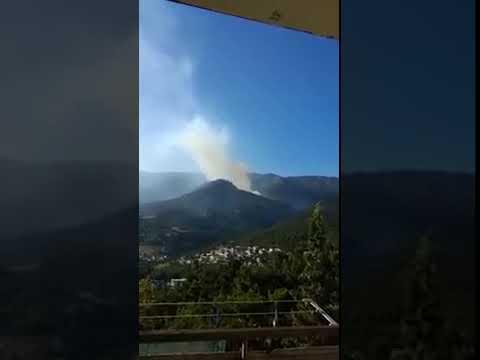 Ялта, 11 августа, 2018 года, горит Крымский горно-лесной заповедник