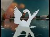 Лебединая верность....mp4