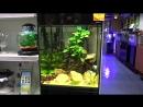 В продаже в супермаркете Аква Лого на ВДНХ - аквариум Aquael Glossy Cube!