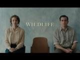 Wildlife (2018) Official Teaser | IFC Films | Jake Gyllenhaal, Carey Mulligan [Eng]
