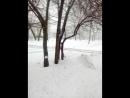 Снежный Новосибирск 2