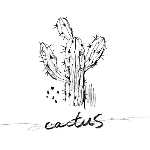 N альбом Cactus
