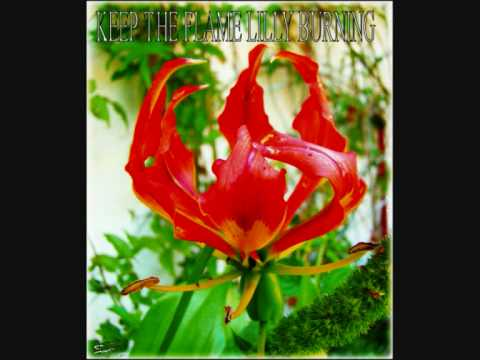 KEEP THE FLAME LILLY BURNING