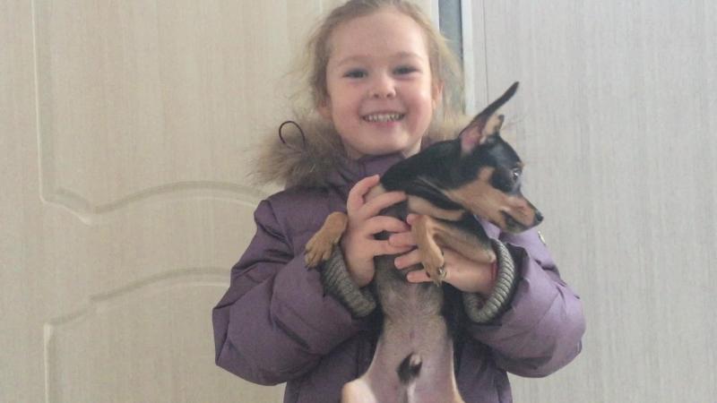 Отзыв нашей маленькой клиентки о Ветеринарной Клинике