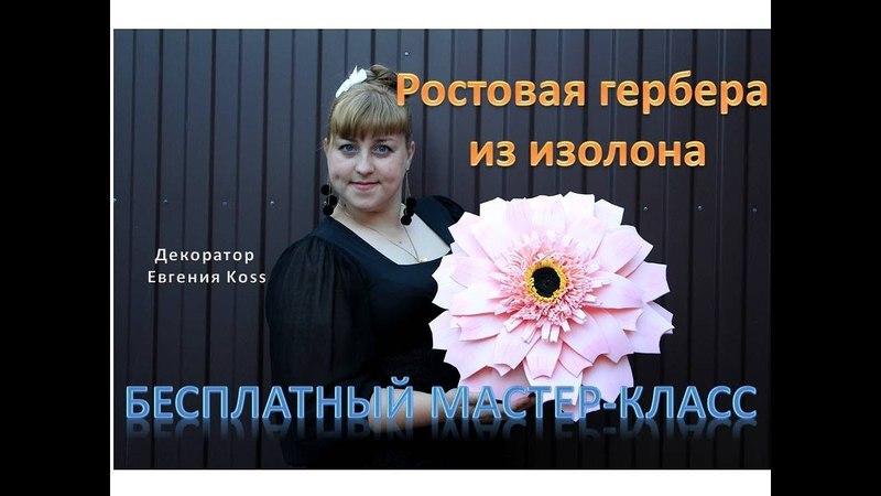 DIY Ростовые цветы. Большая розовая гербера. Large pink gerbera
