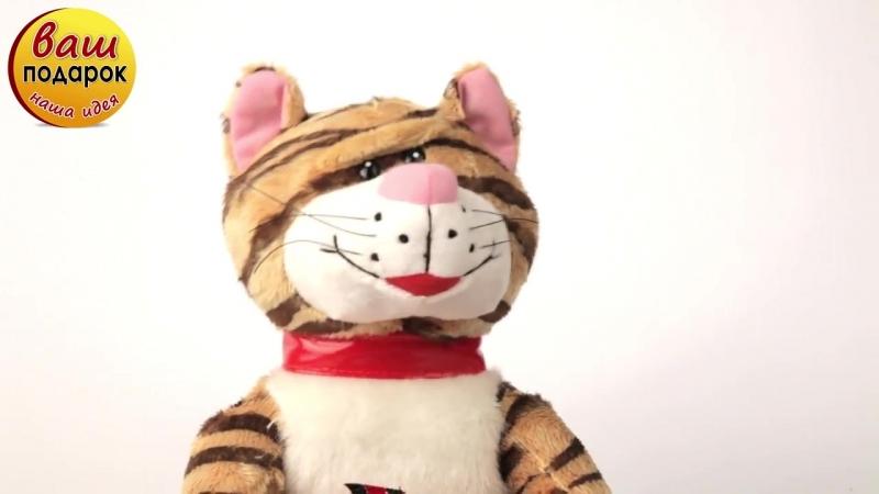 Мягкая музыкальная игрушка Кот и Мышка YANCHENG F.T.C.L Китай