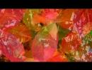 81.BÜLENT ALTINBAŞ [KiRPi] - Colors of autumn ☆彡