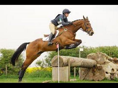 Amazing horse jumps slow mo Chatsworth horse trials