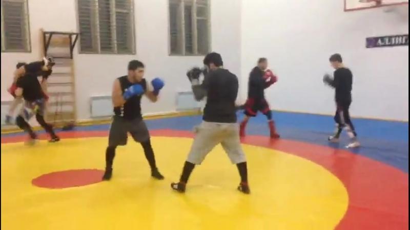 Ханлар Азизов. Вечерные тренировки в СК Алигатор