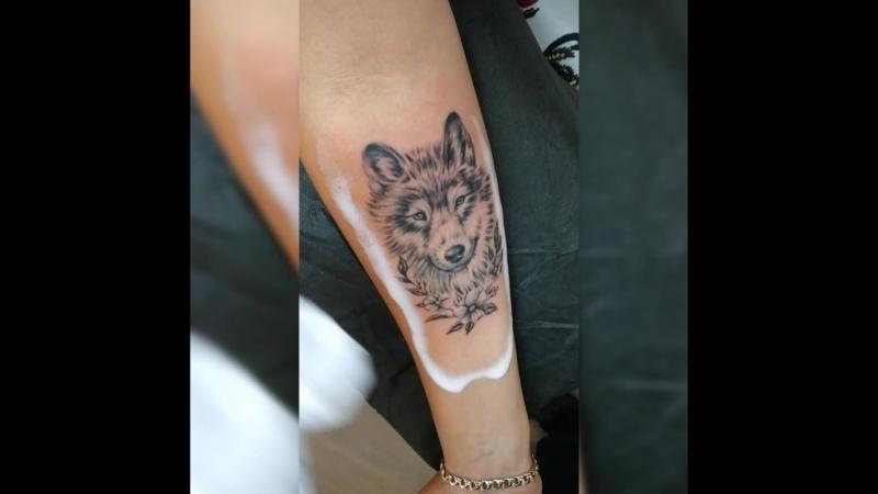 Волчица!