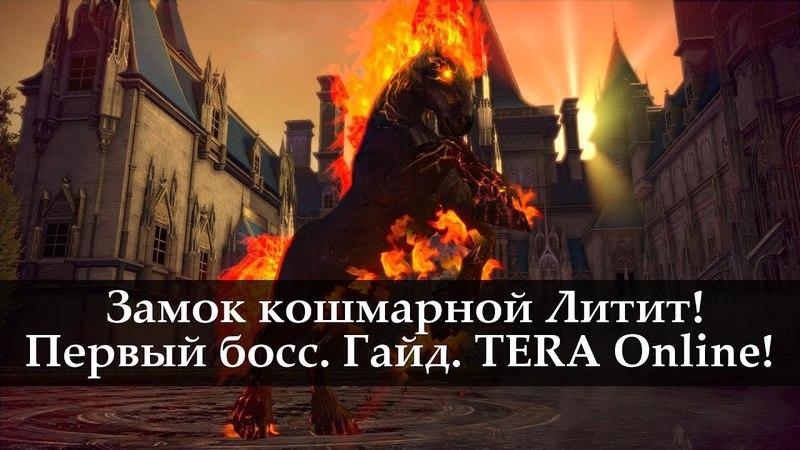 Замок Кошмарной Лилит. Первый босс. Гайд. TERA Online