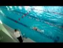 соревнования по плаванию.ноябрь2017.Амели на первой дорожке