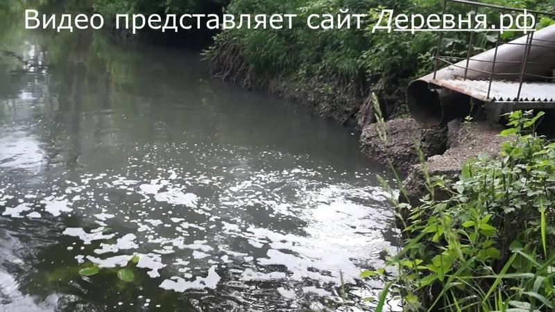 Что сливают с очистных сооружений в реку Шаня города Кондрово, что показали проверки СЭС, смотрите видео репортаж: