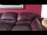 Когда запретил собаке забираться на диван...😊😊😂😂