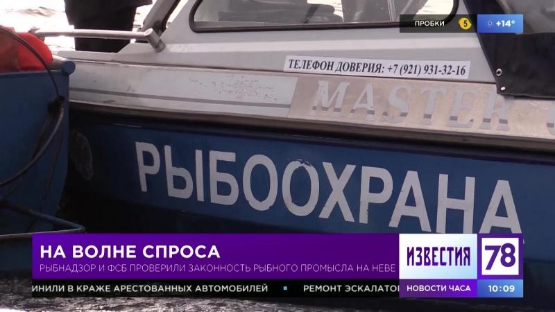 Рыбнадзор и ФСБ проверили законность рыбного промысла на Неве