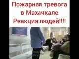 [Kavkaz Vine] Реакция на тревогу в Махачкале