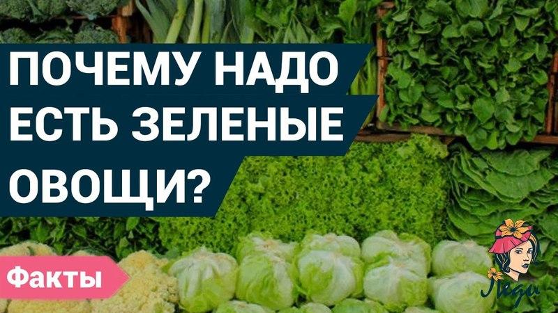 Почему полезно кушать зеленые овощи Истинная польза овощей