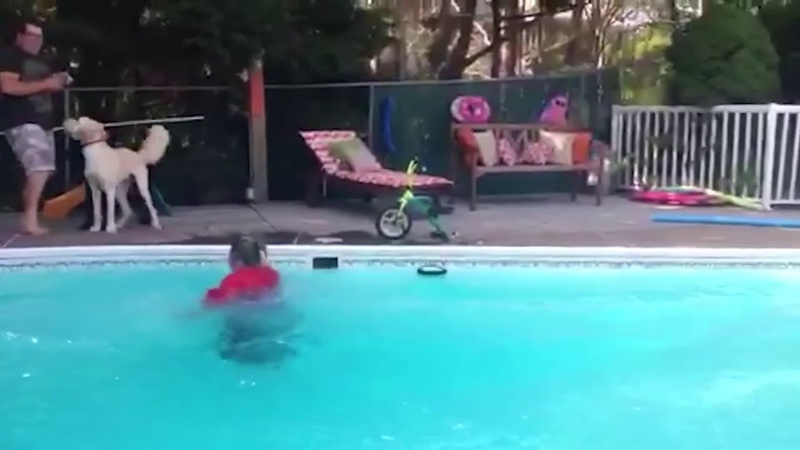Woman on Tiny Bike Falls into Pool  » онлайн видео ролик на XXL Порно онлайн