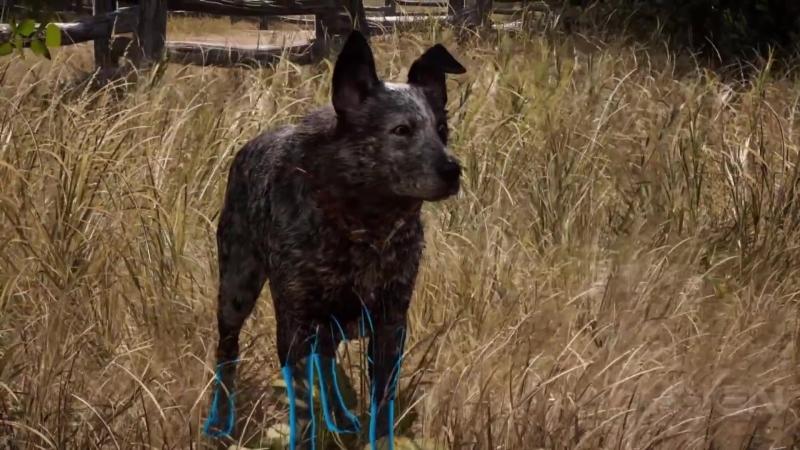 Far Cry 5 Boomer Is A Good Boy - IGN First