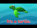 Under The Sea #2 - Marine and Sea Animals Song for Kids - Nursery Rhymes for Kids - Fun Kids English