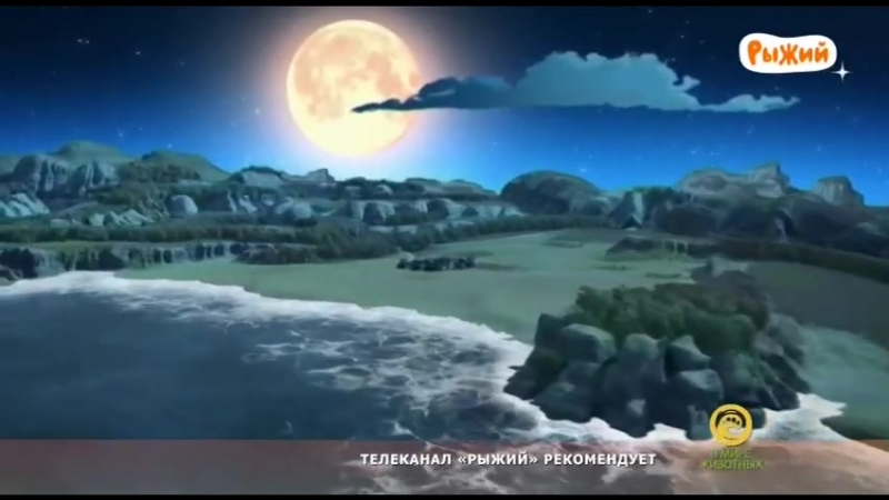 ХРОНИКИ ЗОРРО | 23 СЕРИЯ