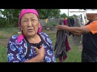 Семья девочки, которая убила котёнка в Алтайском крае, уехала из села