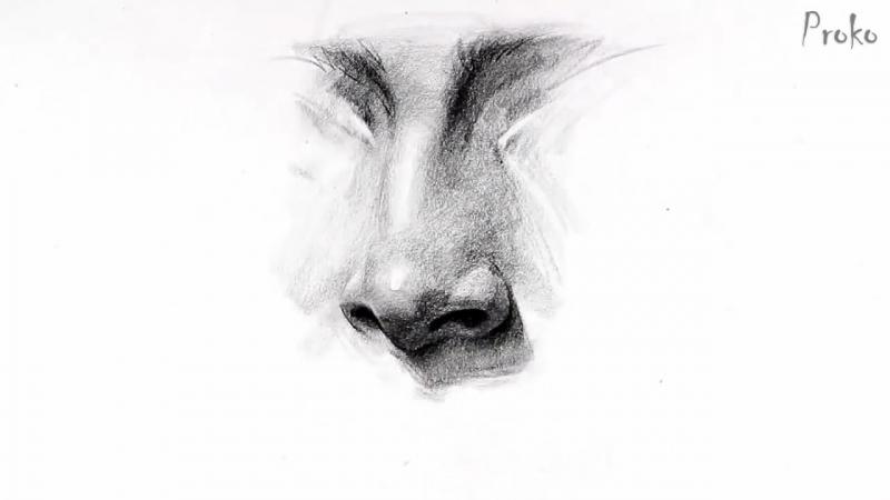 Как рисовать нос поэтапно
