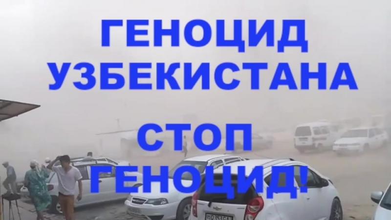 ALGA QARAQALPAQSTAN 215 Солевая бури в Каракалпакстане