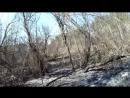 Далматово-Исеть ..Лесные пожары..3 мая 2017. Музыка The Silicon Scientist-Plattenspieler2006CMS 102007