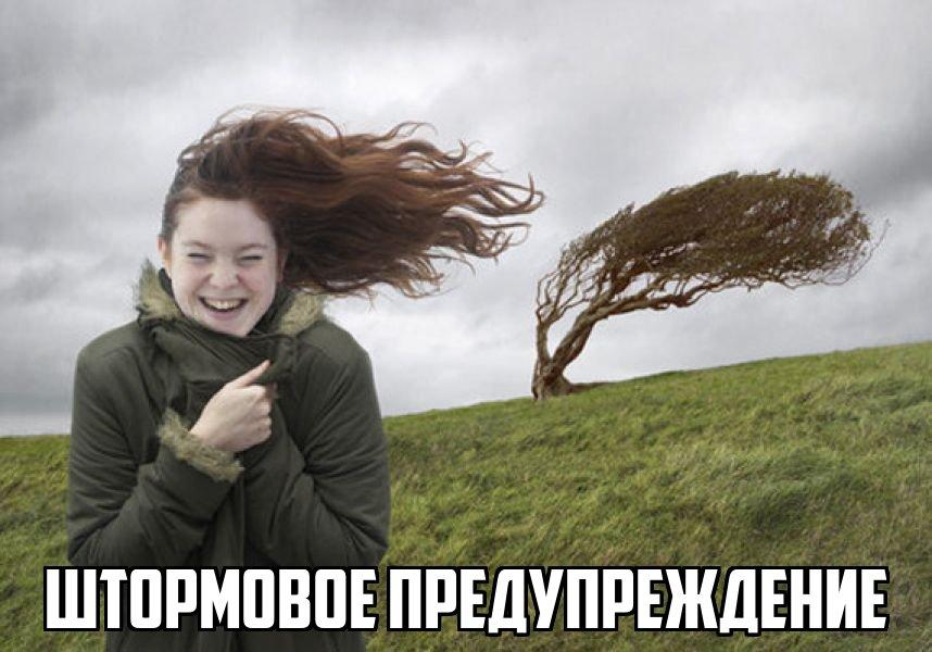 МЧС предупреждает томичей о сильном ветре