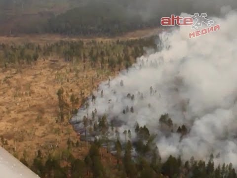Областные власти призвали уральцев к строгому соблюдению правил пожарной безопасности во время посещения лесов и парков