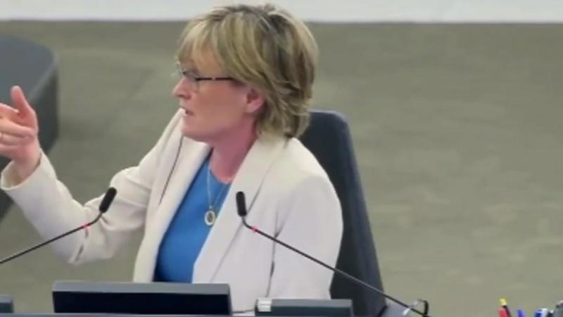 Janice Atkinson défend Tommy Robinson au Parlement Européen et on lui coupe son micro Vive la Démocratie