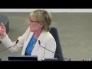 Janice Atkinson défend Tommy Robinson au Parlement Européen et on lui coupe son micro... Vive la Démocratie