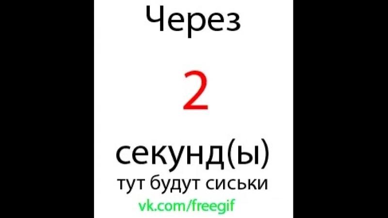 Doc377008805_484856063.mp4