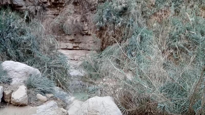 Водопады Эйн-Геди
