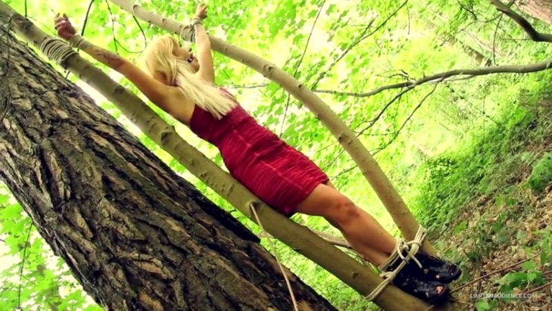 Bondage in the wood