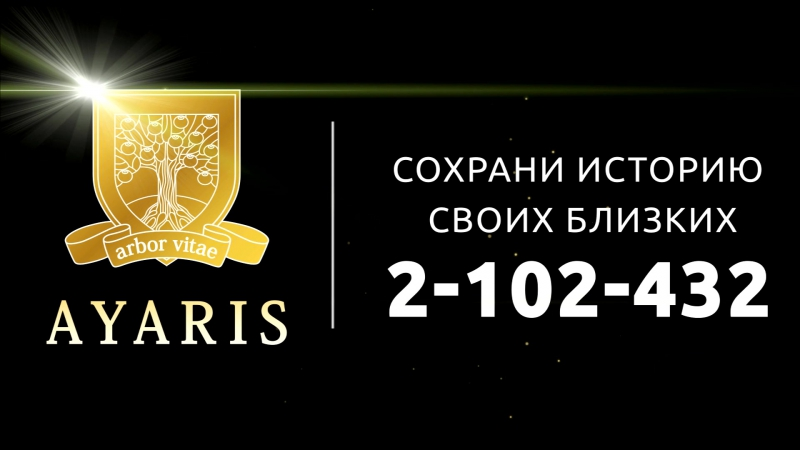 Ахметшина Дилия Фаритовна. Аярис